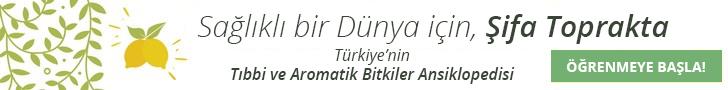 türkiye'nin tıbbi ve aromatik bitkiler ansiklopedisi